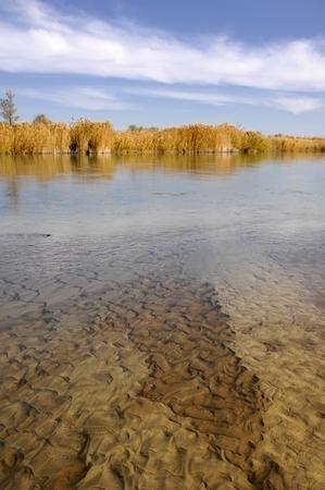 cane creek: river  Ili Kazakhstan