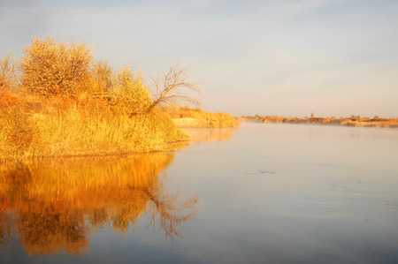 cane creek: River  Ili in Kazakhstan. Stock Photo