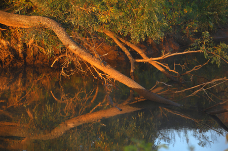 sorbus: river, lots of water, picturesque coast Stock Photo