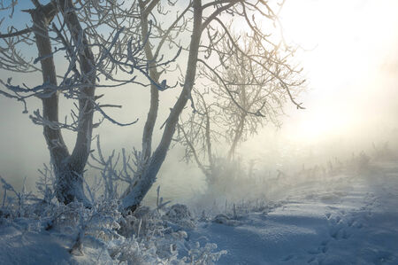 River winter in Russia. Tatarstan Kama photo