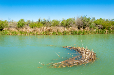 effluent: river, stream, flood, effluent, ford, nulla. a large natural stream of water flowing in a channel to the sea, a lake, or another such stream. Stock Photo