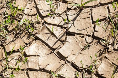 sequias: textura de la tierra agrietada prolongada sequ�a