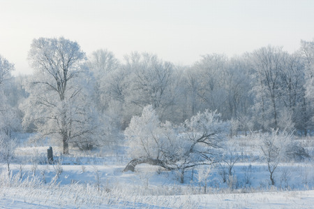 hemisphere: winter wintertide wintertime hibernate he coldest season of the year in the northern hemisphere from December to February and in the southern hemisphere from June to August. Stock Photo
