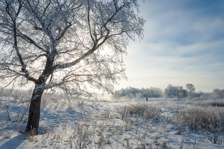 hibernate: winter wintertide wintertime hibernate he coldest season of the year in the northern hemisphere from December to February and in the southern hemisphere from June to August. Stock Photo