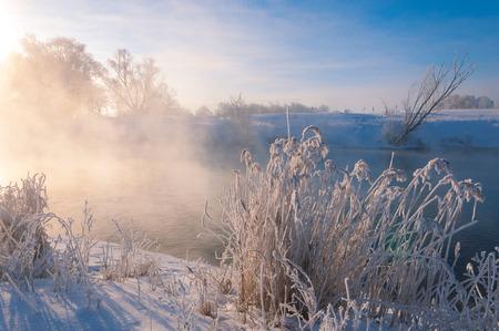hibernate: winter wintertide wintertime hibernate he coldest season of the year