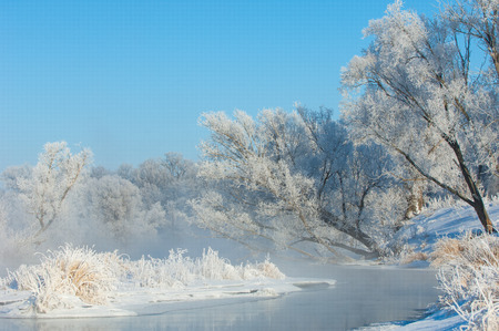 winter, winter-tide, winter-time,  hibernate, he coldest season of the year, in the northern hemisphere from December to February and in the southern hemisphere from June to August. photo