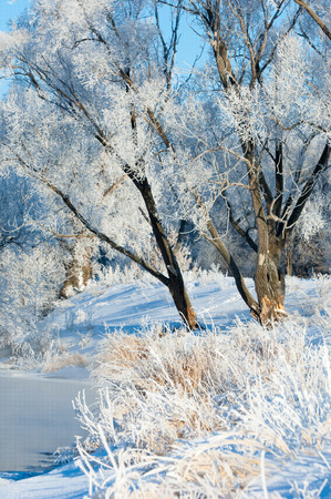 hibernate: winter, winter-tide, winter-time,  hibernate, he coldest season of the year, in the northern hemisphere from December to February and in the southern hemisphere from June to August.