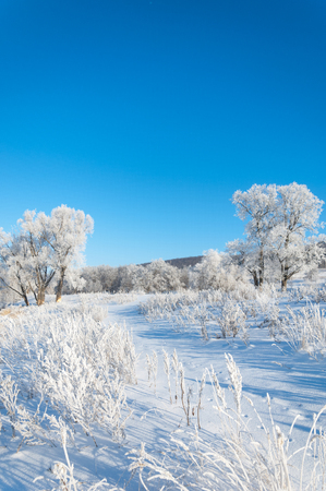 wintertide: winter, winter-tide, winter-time,  hibernate, he coldest season of the year Stock Photo