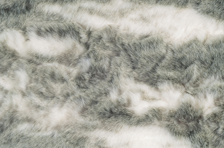 lustre: Texture. Fur. Rabbit. Photos made in the studio