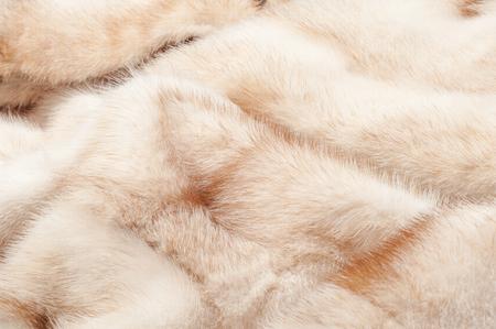nerts: textuur. Nertsen bont. bontjas. foto studio