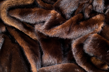 texture. Mink fur. mink coat.  photo studio Stock Photo - 37998994