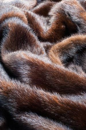 visone: texture. Pelliccia di visone. visone cappotto. studio fotografico Archivio Fotografico