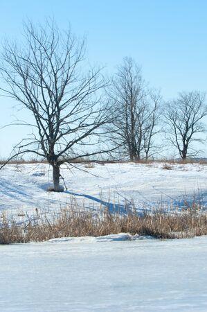 frozen lake: Frozen lake in the spring. spring ice Stock Photo