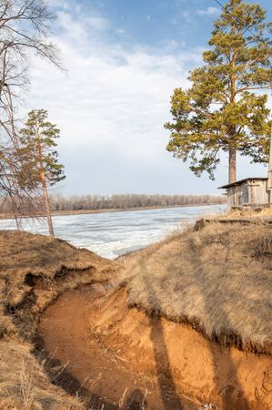 springtide: Pine forest in spring. River ice.  the season of spring. spring, springtime, springtide, prime. the season after winter and before summer, in which vegetation begins to appear, Stock Photo