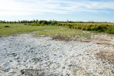 Steppe zoutoplossing grond. zout zout in zout. steppe prairie veldt veld. Zoutgronden van de woestijn, zoutmeren ,. levenloze verbrandte aarde. kale steppe van Kazachstan