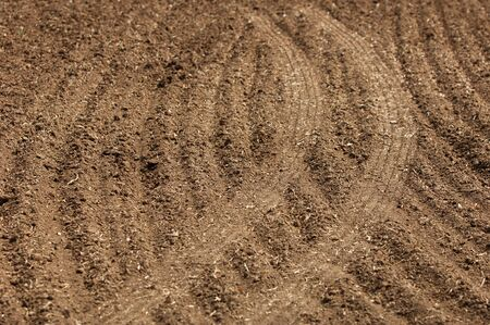 black soil: Field plowed, sown cereals. Plowed field in spring day. Black soil plowed field. Plowed field in the blue sky Stock Photo