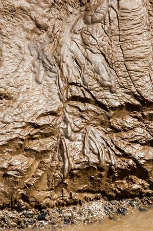 silt: Texture  sludge  silt  clay  mud  ooze  slime