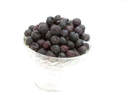 black raspberries: Black raspberries. Black raspberry blackberry isolated on white background as package design element. Sort Cumberland Stock Photo