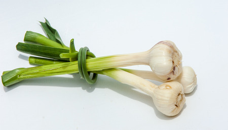 bulb and stem vegetables: garlic.Garlic is not ripened on the stem of the leaf. a strong-smelling pungent-tasting bulb, used as a flavoring in cooking and in herbal medicine. Stock Photo