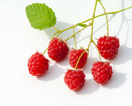 stash: raspberry. an edible soft fruit related to the blackberry, consisting of a cluster of reddish-pink drupelets. razz, fence, stash