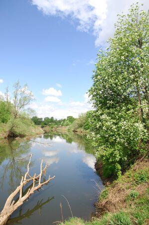reflexion: río de primavera. Río y bosque de la primavera. Composición de la naturaleza. Reflexión de las nubes en el río de la primavera. Árboles en la orilla de un río en primavera