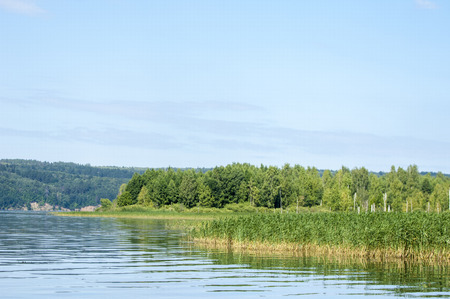 hydrological: Summer clouds river reeds trees. a large natural stream of water flowing in a channel to the sea, a lake, or another such stream.
