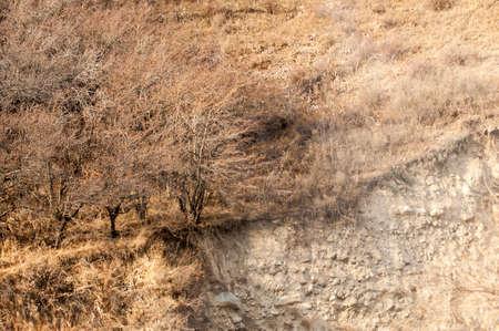 tien shan: mountains. Tien Shan. Kazakhstan