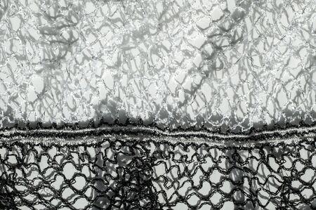 autumn motif: Texture, background, fabric black and white scarf
