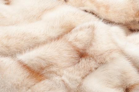 mink: texture. Pelliccia di visone. visone cappotto. studio fotografico Archivio Fotografico