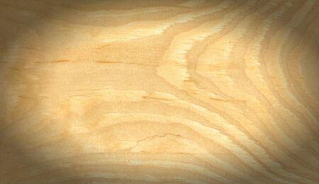 tilo: Textura del �rbol del tilo. Fotograf�a de Estudio Foto de archivo