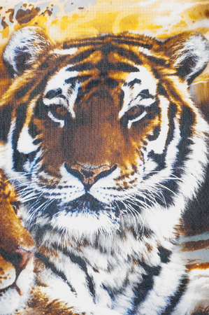 leather coat: Silk fabric texture. Tiger safari.   Photography Studio Stock Photo