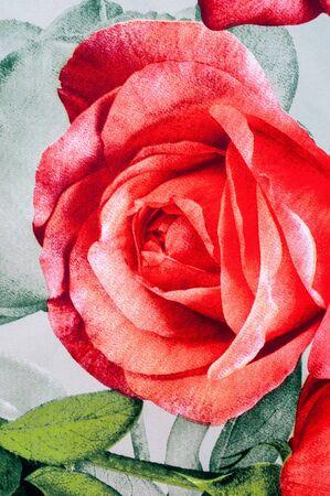 tela algodon: Textura, fondo. ropa de algod�n. Rosas flores sobre un fondo gris.