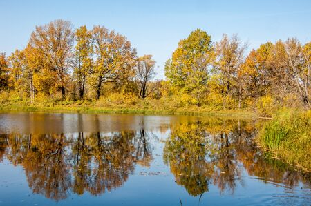 fall landscape: Fall landscape. Autumn colorful foliage over lake with beautiful woods in red and yellow color. (Sokolki Tatarstan Russia) Stock Photo