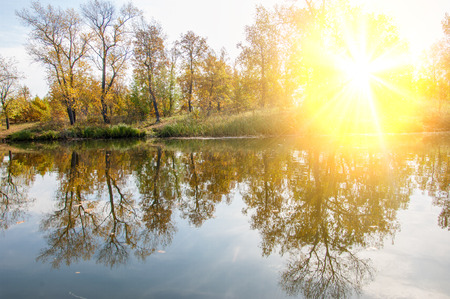 effluent: autumn, fall, leaf fall, fall of the leaf. a large natural stream of water flowing in a channel to the sea, a lake, or another such stream