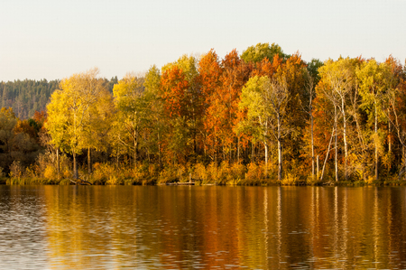 Autumn mixed forest reflected in the water bright colors of autumn trees. Autumn forest and lake in the fall season. Stock Photo