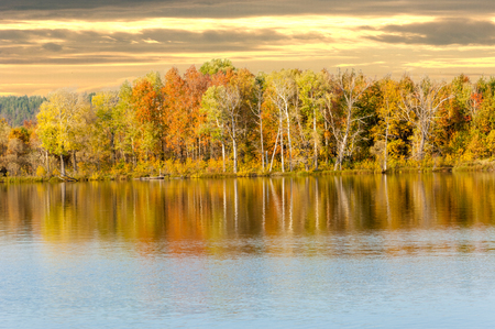 Autumn mixed forest reflected in the water bright colors of autumn trees. Autumn forest and lake in the fall season. Standard-Bild