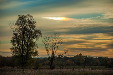 aureole: Sunset in autumn. Sunset in autumn forest. Beautiful sunrise on the field. halo, aureole, halation, nimbus, glory, aureola Stock Photo