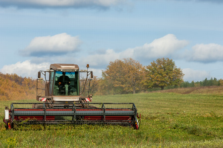 mowing grass: Autumn meadow for mowing grass. harvester for mowing grass.  Agricultural image of a large mechanized Swather mowing a grass field to make quality grass hay bales for livestock feed
