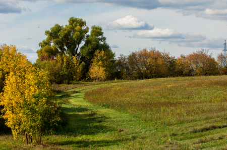 mowing grass: Autumn meadow for mowing grass Stock Photo