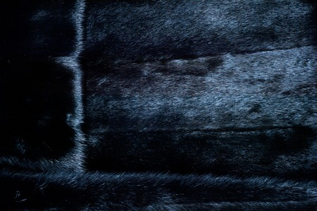 visone: Texture, background. Mink fur. Womens mink fur coat Archivio Fotografico