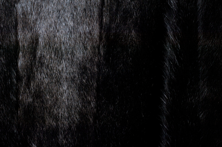 manteau de fourrure: Texture, background. Mink fur. Womens mink fur coat Banque d'images
