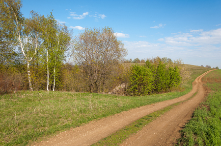 Road COUNTRY in spring day. Country road to the forest in spring day. Country road between green field at summer and blue clean sky. Nature conceptual image.