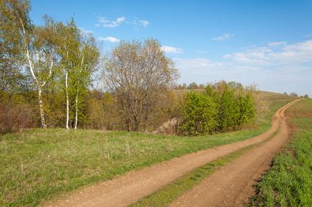 Straße LAND im Frühlingstag. Landstraße zum Wald im Frühlingstag. Landstraße zwischen grünen Feld am Sommer und blau sauberen Himmel. Natur konzeptionelles Bild.