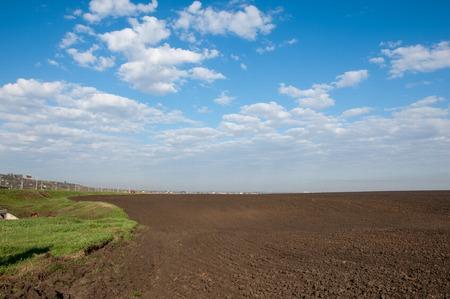 field crop: Field plowed, sown cereals. Plowed field in spring day. Black soil plowed field. Plowed field in the blue sky Stock Photo