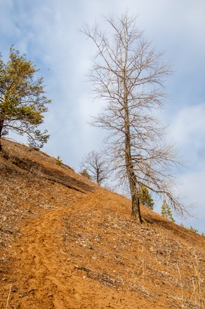 steep: early spring steep cliff