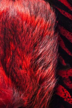 visone: struttura. sfondo. pelliccia di visone, verniciato nel colore rosso