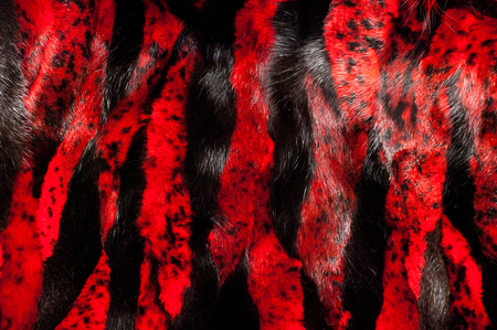 mink: texture. background. mink fur, painted in red color Stock Photo