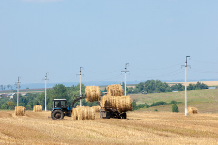 hauling tractor: Tractor hauling a round bale an open field with blue sky. tractor unloads bales of hay in the field. Hay tractor on the field