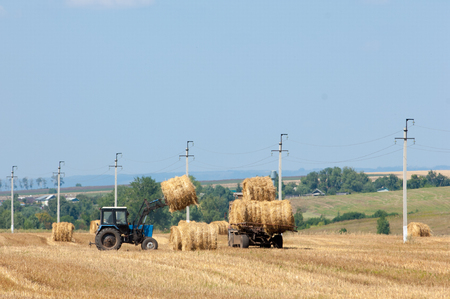 hauling: Tractor hauling a round bale an open field with blue sky. tractor unloads bales of hay in the field. Hay tractor on the field
