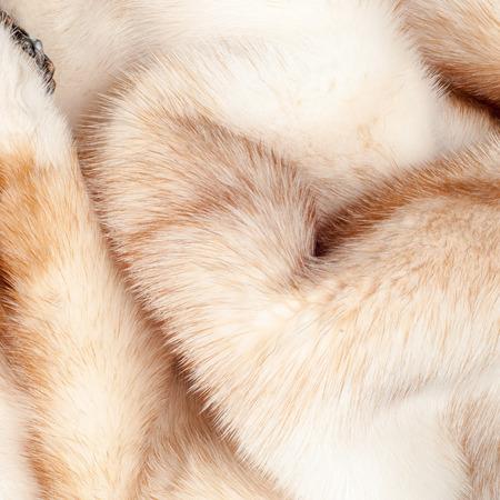 mink: texture. Mink fur. mink coat.  photo studio